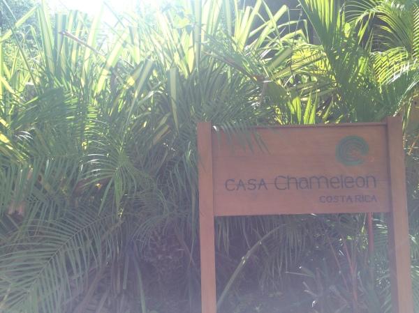 Casa Chameleon Sign